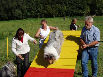 album/photo-portee-d-2004-09-19-una-agility.jpg