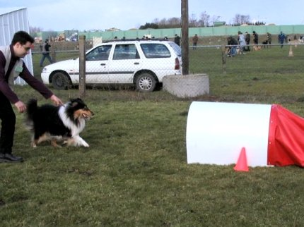 album/photo-portee-d-2005-03-05-dreamy-agility-1.jpg