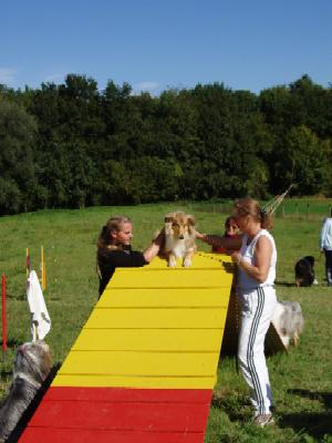 album/photo-portee-f-2004-09-19-Voika-agility.jpg