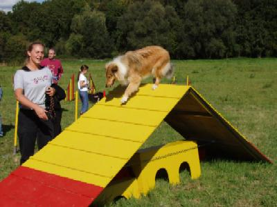 album/photo-portee-f-2004-09-19-voika-2-agility.jpg